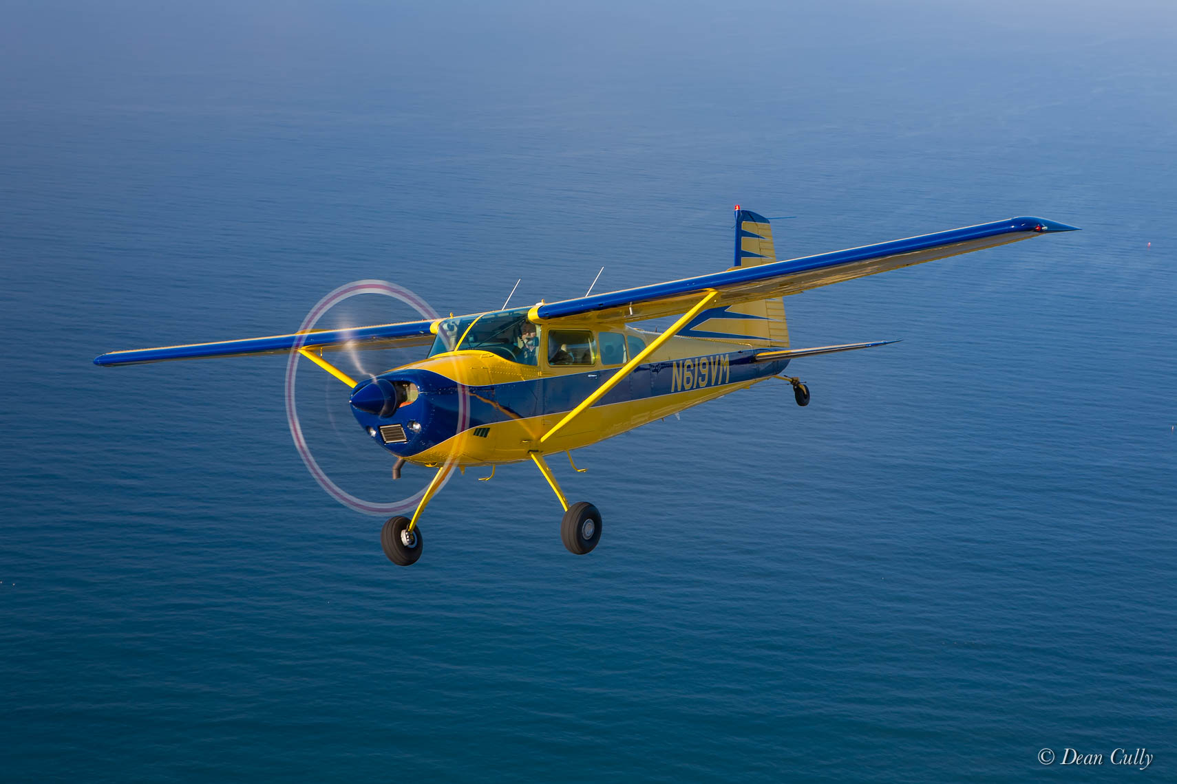 Cessna 185 on Blue